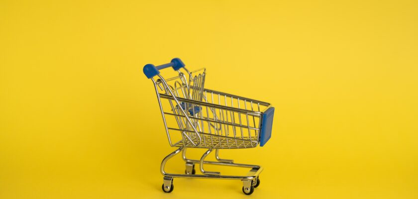 Best eCommerce Business Ideas
